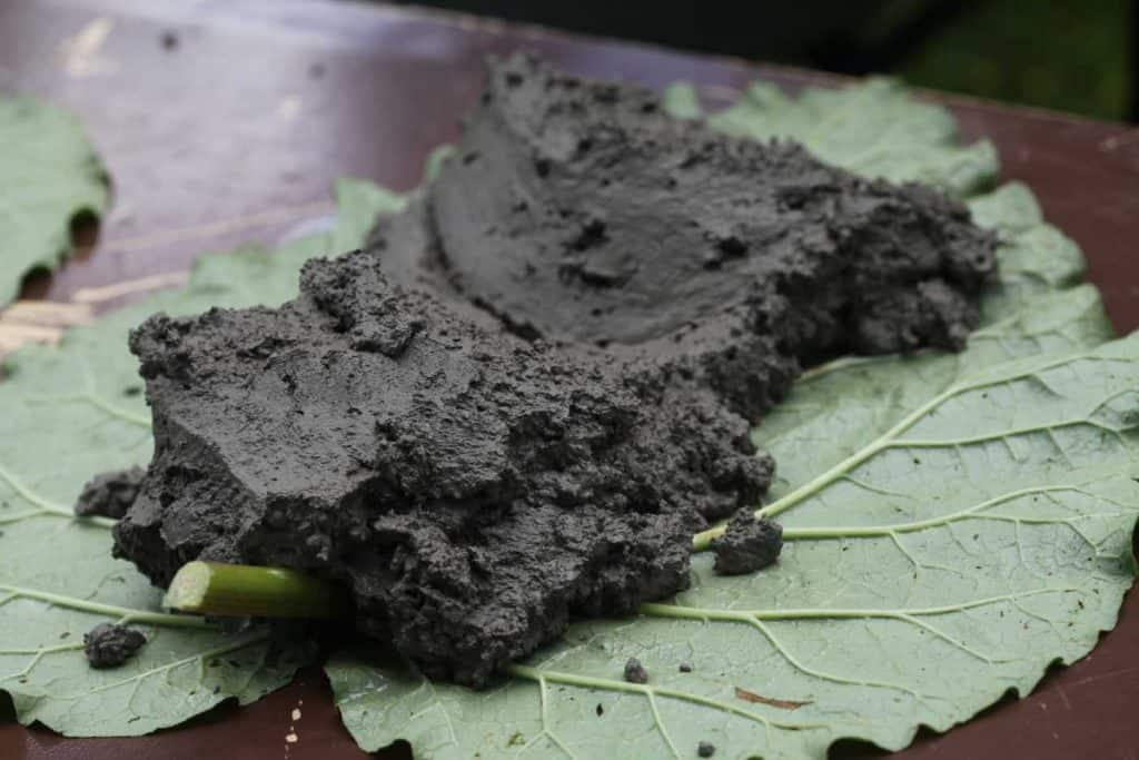 a dollop of concrete on a rhubarb leaf on a brown table