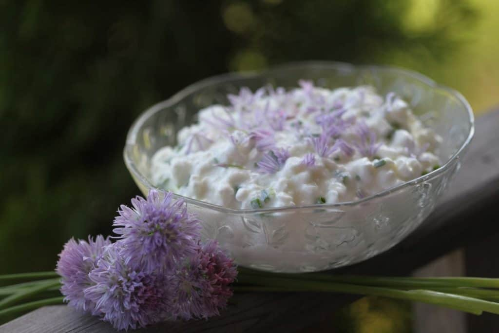 a clear bowl on a wooden railing with cottage cheese and chives, decorated with chive blossoms and petals
