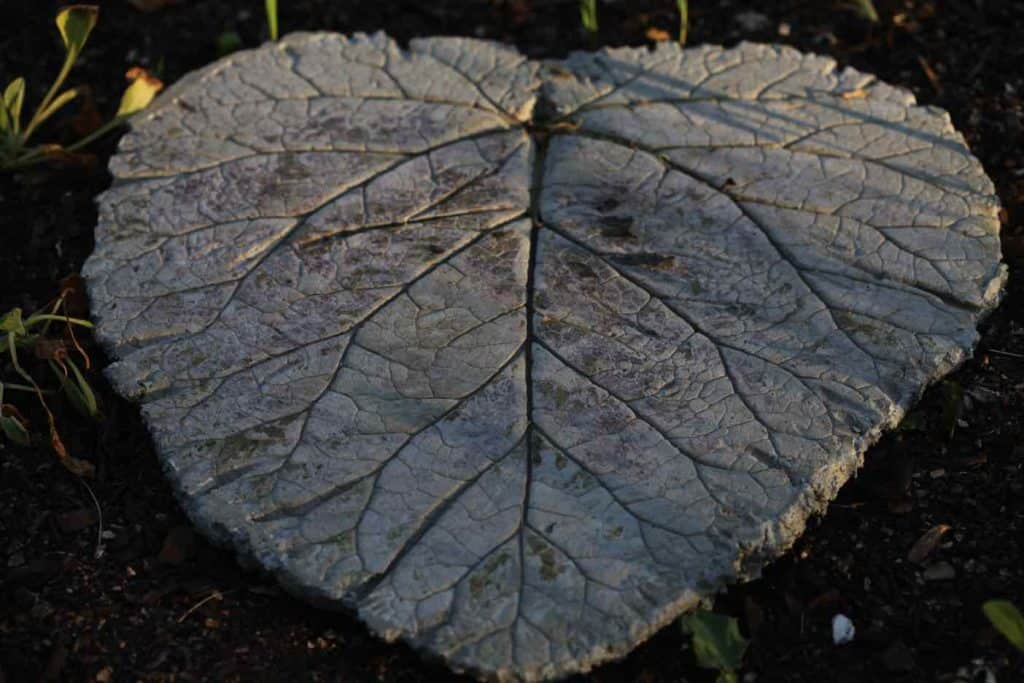 concrete leaf stepping stone in the garden
