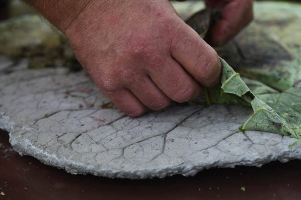 a hand pulling a leaf off a concrete stepping stone