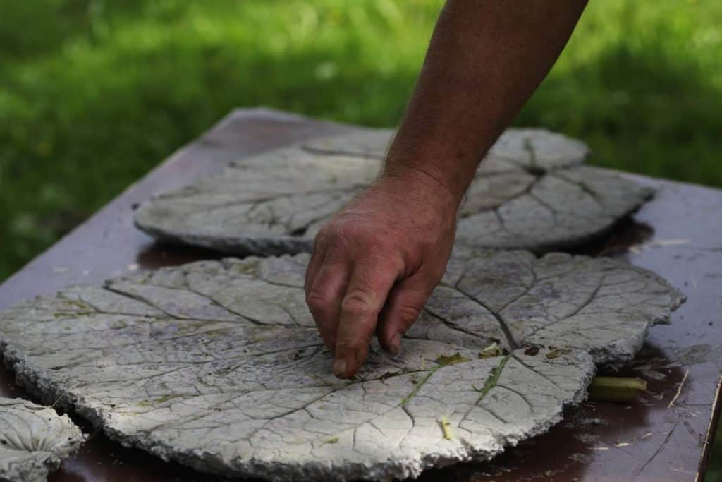 a hand touching stepping stones with leaf imprints