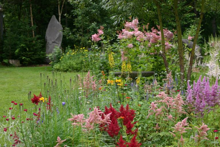 a garden filled with many different coloured flowers