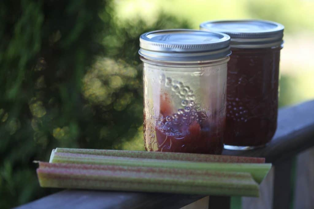 two mason jars containing rhubarb jam on a wooden railing , next to some pieces of raw rhubarb