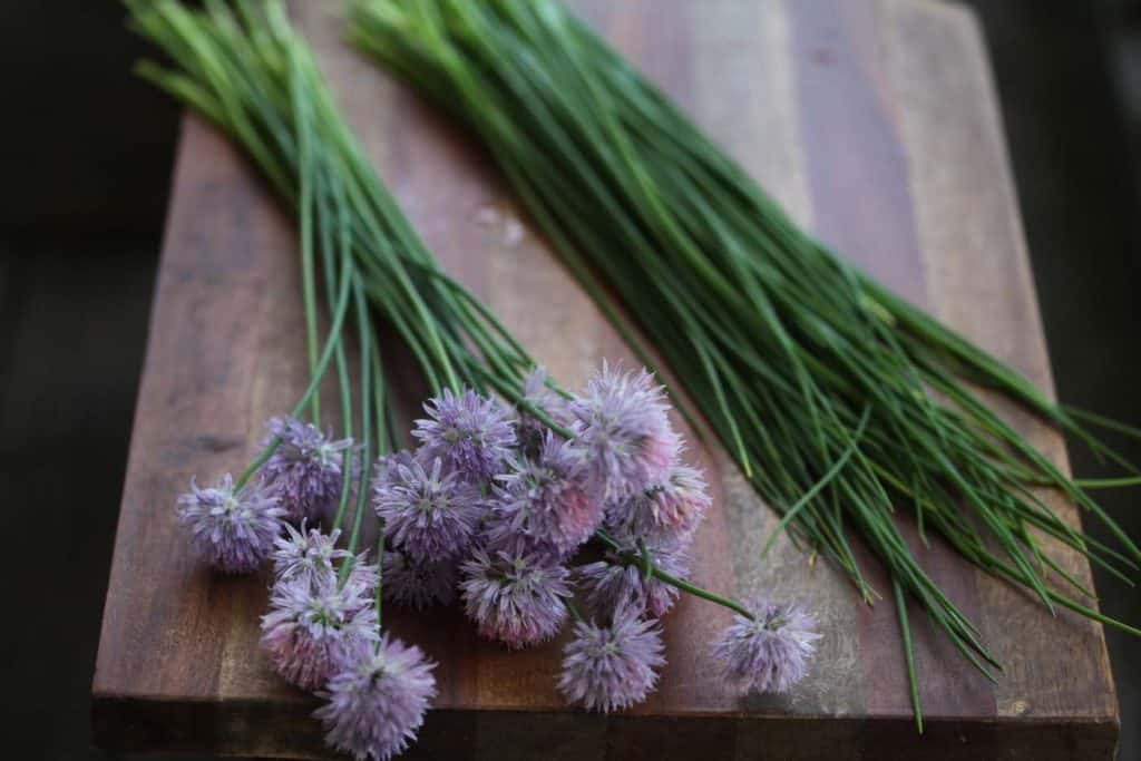 chive flowers separated from the chive leaves and placed on a wooden cutting board