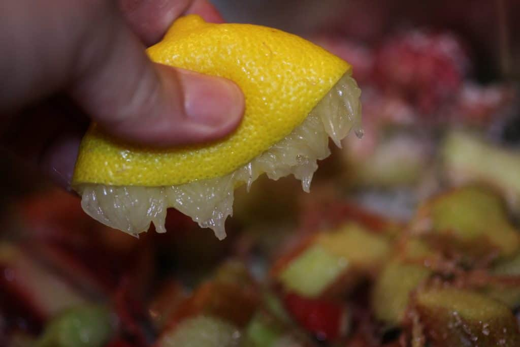 a hand holding half a lemon squeezed above a bowl below