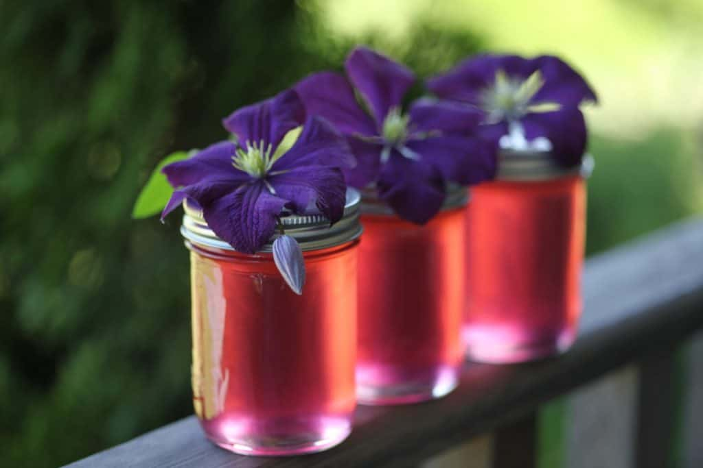 three mason jars of fireweed jelly on a wooden railing