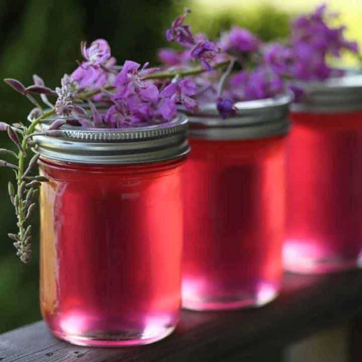 How To Make Fireweed Jelly