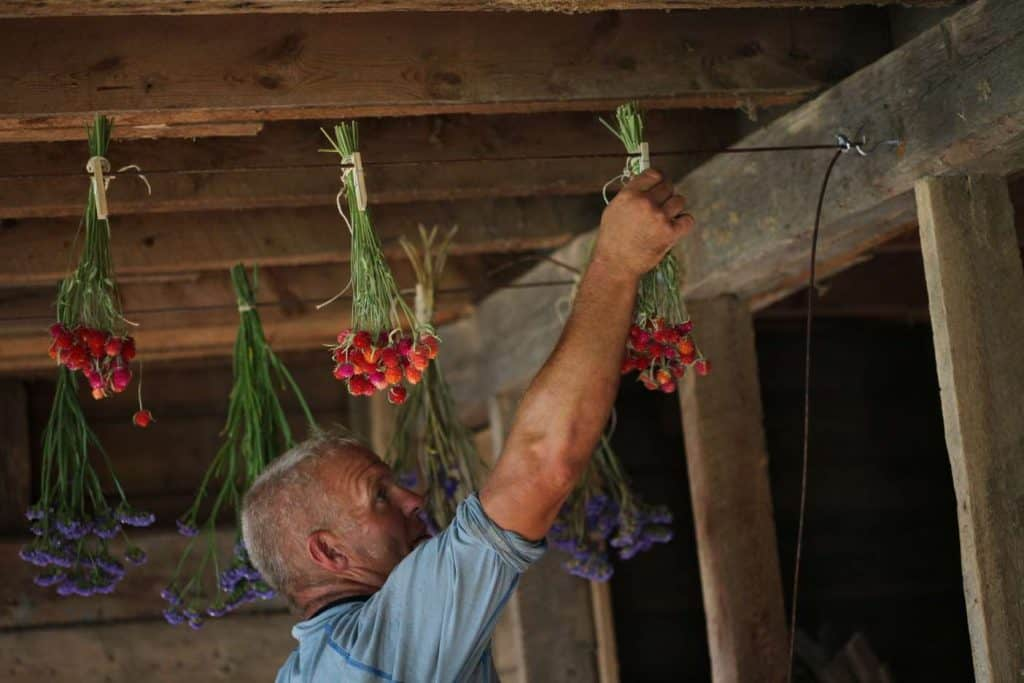 a man attaching flowers to a drying line with clothes pins