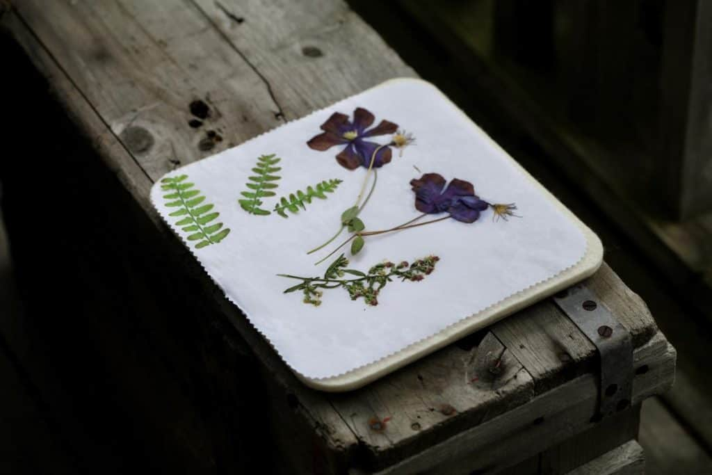 flowers and foliage pressed with the microwave press, sitting on a grey wooden box