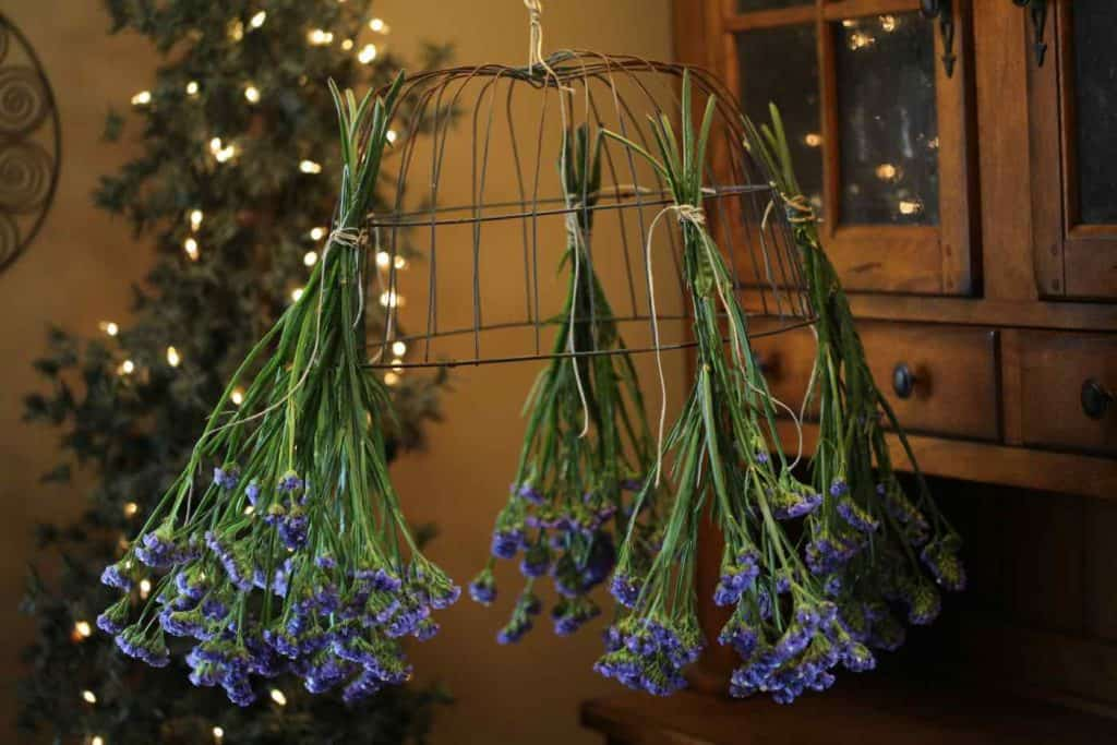 purple statice hanging from a wire basket with fairy lights in the background